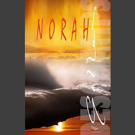 Norah une roman de Gilles Deschamps