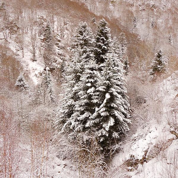 Photo prise entre Axat et Puyvalador. Un jour de neige. Juste avant de déboucher sur le Capcir.