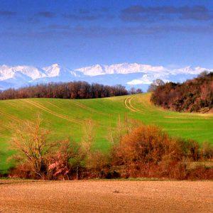Les Monts Dolmes vues de Mirepoix