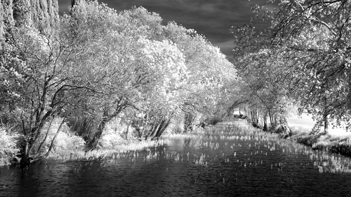 Photo infrarouge à Coursan dans l'Aude