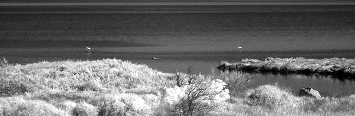 Photo de l'étang de Port la nouvelle dans l'Aude