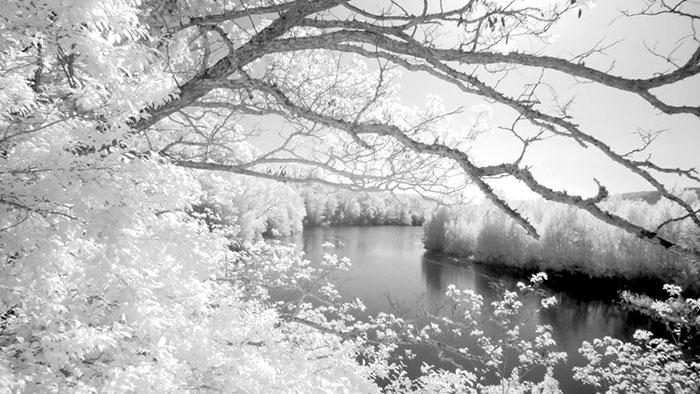 Photo infrarouge de l'Orbieu à Ferrals dans l'Aude