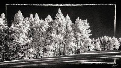 Font Romeu infrarouge neige en Occitanie