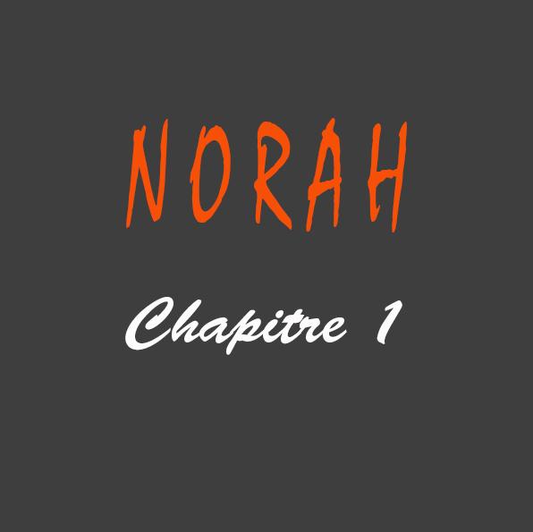 Roman Norah de Gilles Deschamps chapitre 1