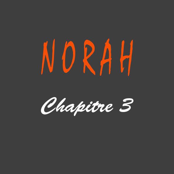 Roman Norah de l'auteur Gilles Deschamps